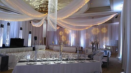 Electric Entertainment ceiling-treatments Picture
